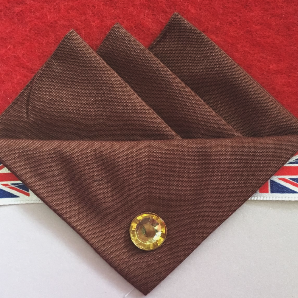 Brown (Dark Brown) Three Point Pocket Hankie & Pin